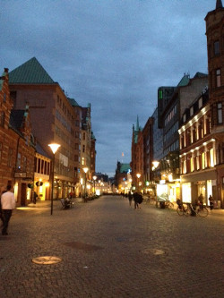 Scene of Swedish city in the evening